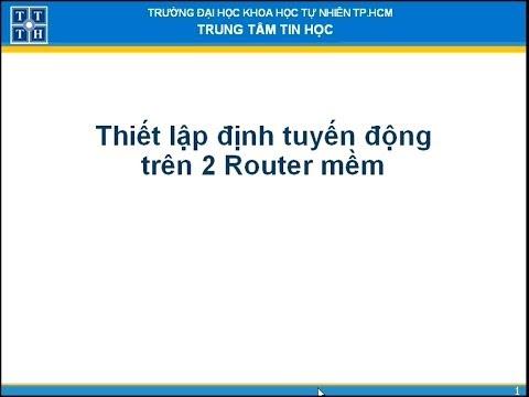 Thiết lập định tuyến động trên 2 router mềm