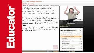 """Alpha Helix & Beta Conformation"" 