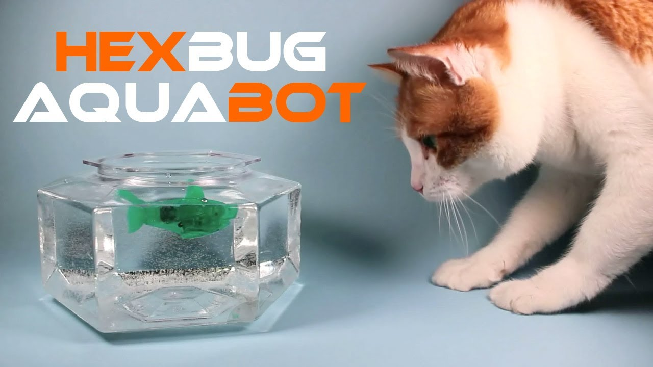 Hexbug aquabot smart fish technology review youtube for Aquabot smart fish