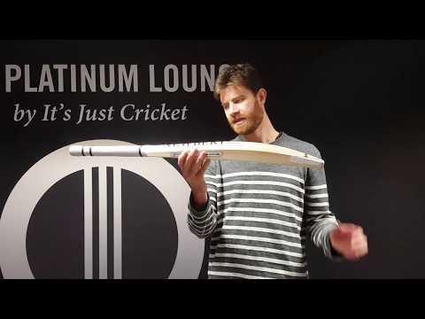 Newbery Quantum Player Cricket Bat