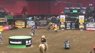 Professional Bull Riders in NYC 2016