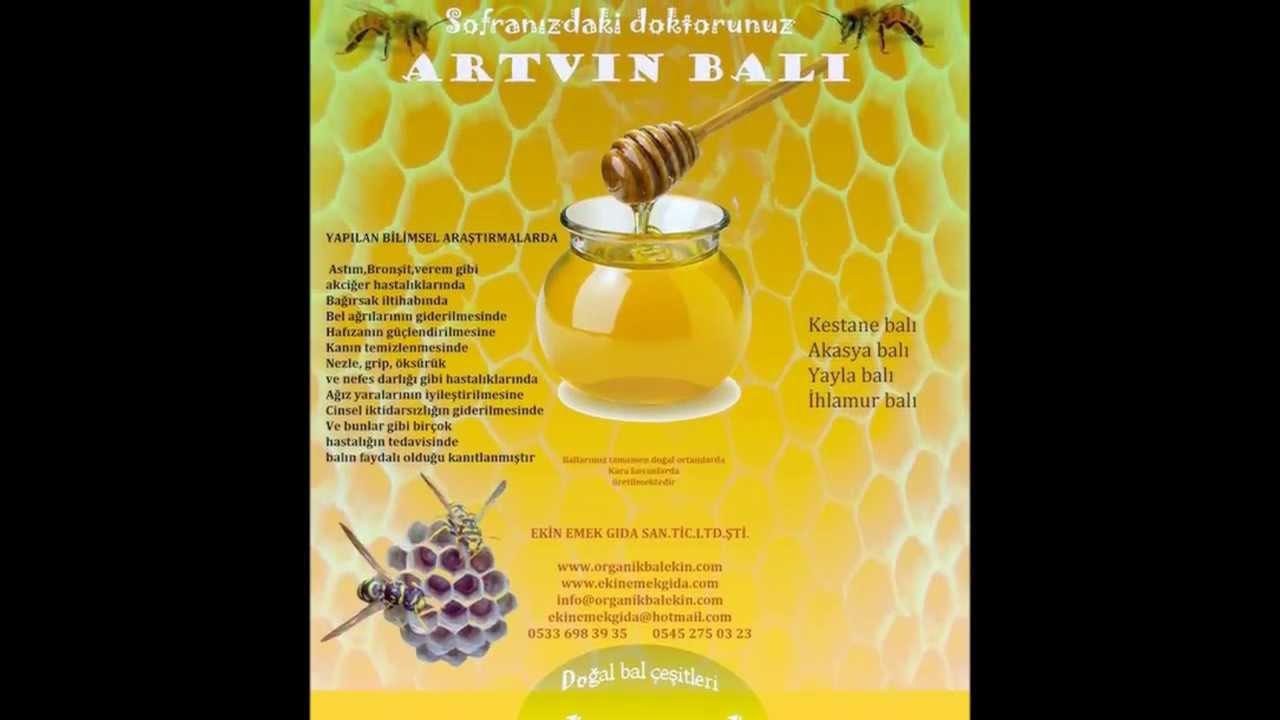 bal arısı sizin için çalışıyor