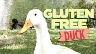 Gluten Free Duck