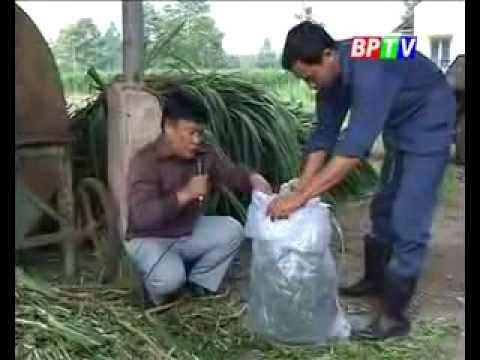 Tin tức nhà nông: Chương trình truyền hình Bình Phước - Khuyến Nông 06/01/2014