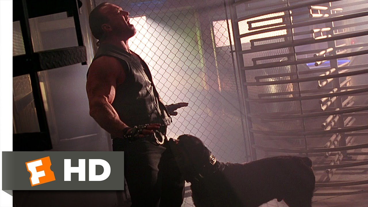 Barb wire movie clip package check hd