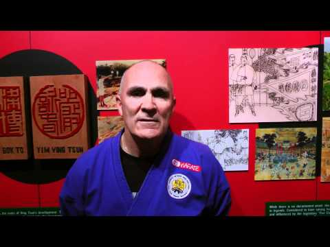 HKB Wing Chun[Black Flag Wing Chun] Testimony from USA, North America #92