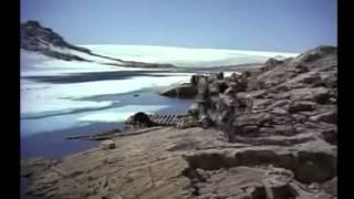 A Sombra Do Lobo- Filme Completo Dublado