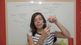 Enlace covalente: Geometría molecular
