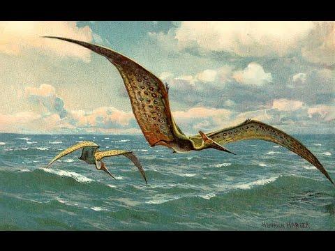 Vũ Liz Khủng Long Đại Chiến Phần 8 : Bắt Khủng Long Bay Pteranodon !!!