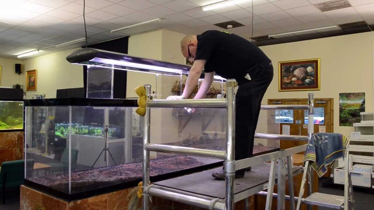 'Reciprocity' Aquascape by James Findley - The Making Of ...