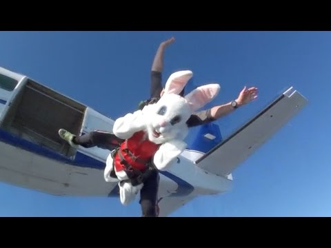 Easter Bunny goes skydiving