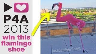 P4A: Win my flamingo shoe!