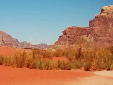 Desert Eagle - Vittoria