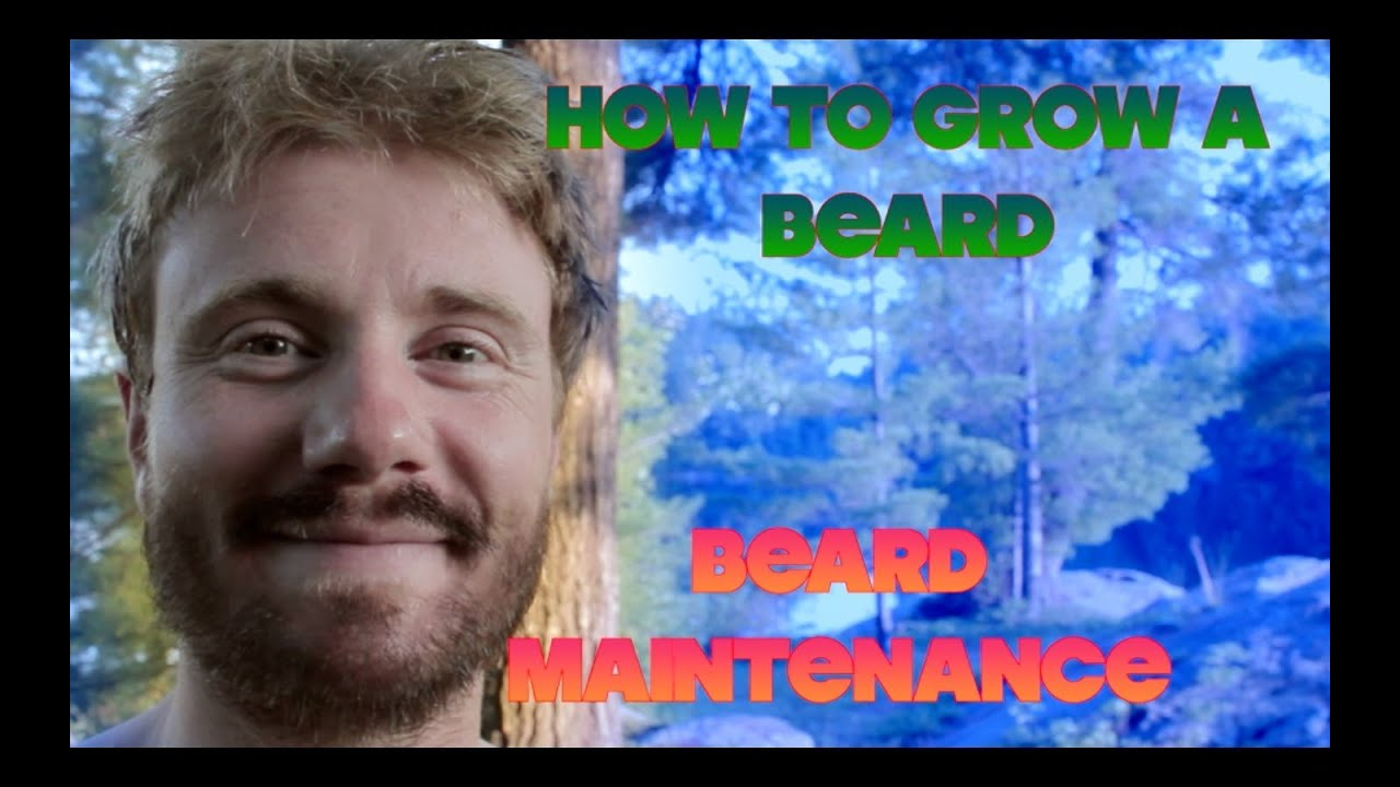 how to grow a beard beard maintenance tips aka taming the beast youtube. Black Bedroom Furniture Sets. Home Design Ideas