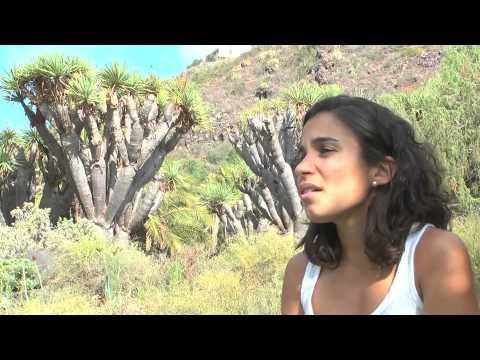 Tres Valles Trail Copa Canarias 2013