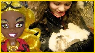 EMMA GETS A BUNNY! AND WE DOLL HUNT FOR FRIGHTS CAMERA