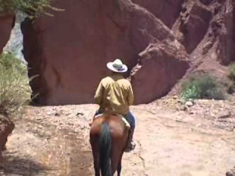 Bolivian Cowboy