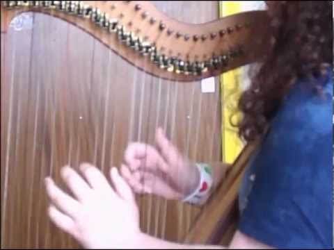 Opposite - Biffy Clyro (Harp Cover)