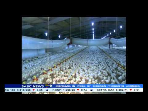 South Africa has increased the import duties on five poultry products