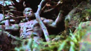Predator (1987) Arnold Schwarzenegger.mp4