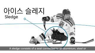 kor-eng-장애인-아이스-하키-para-ice-hockey-를-알아보자
