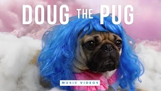Doug the Pug Funny Music Video Compilation