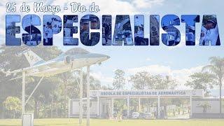 Na próxima sexta-feira (25/03) comemora-se o Dia do Especialista de Aeronáutica. Veja neste vídeo uma homenagem a esses profissionais de ponta que atuam em diversas frentes para dar suporte à atividade-fim da Força Aérea Brasileira (FAB).