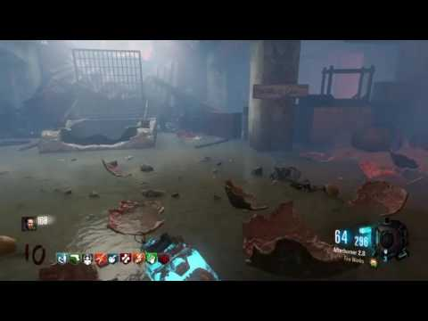 HG-40 pap zombies gameplay