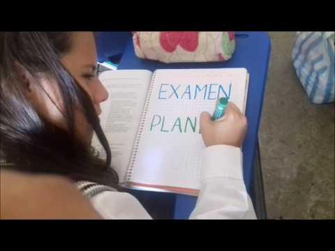 Examen Planea 2016