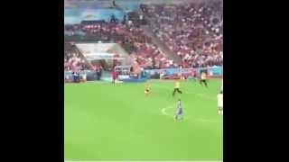 @VitalyzdTV Runs Onto Field During FIFA World Cup Finals
