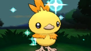 Pokemon X And Y SHINY TORCHIC W/Speed Boost ONLY AFTER