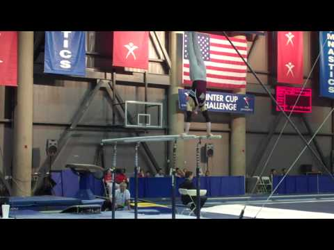Tyler Evans - Parallel Bars - 2010 Winter Cup - Day 1