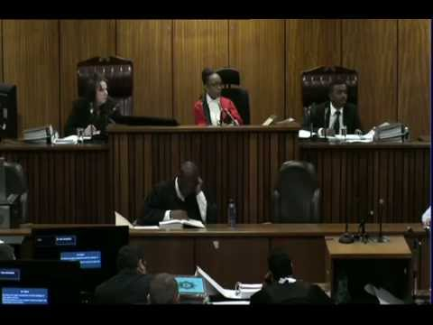 Oscar Pistorius Trial: Thursday 3 July 2014, Session 1