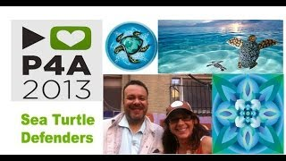PROJECT FOR AWESOME 2013 : My Awesome Sea Turtle Defender Project