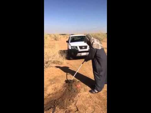 سفراء فطن في مدرسة ابن تيمية بعنيزة يطلقون حملتهم لتنظيف منتزهات الغضا