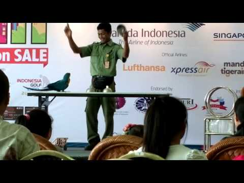 2014 03 02 9082 Indonesia Travel and Holiday Fair 2014 - Parrot