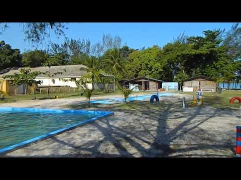 PARK CLUBE DO TOTÓ ! Primeiro parque temático para Cães e seus donos do Brasil.