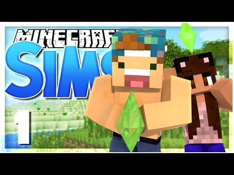 Joey Graceffa Minecraft Sims Craft