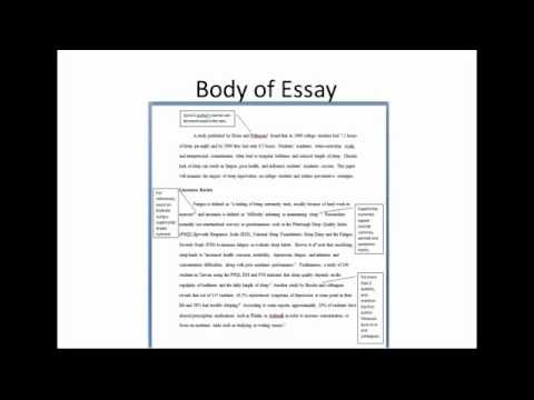 Argumentative essay on the cost of college