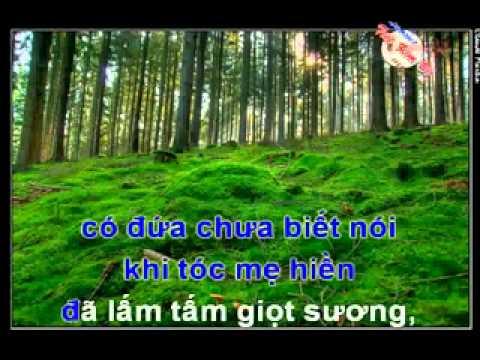 Karaoke Nhung Doi Hoa Sim -  tan co (feat voi GMV)