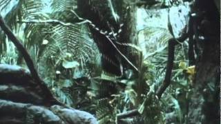 Predator Movie Trailer (1987) FREE MOVIE DOWNLOAD