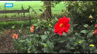 Langs het Tuinpad bij Corry van de Wiel - 641 LangsHetTuinpad   Corry van de Wiel