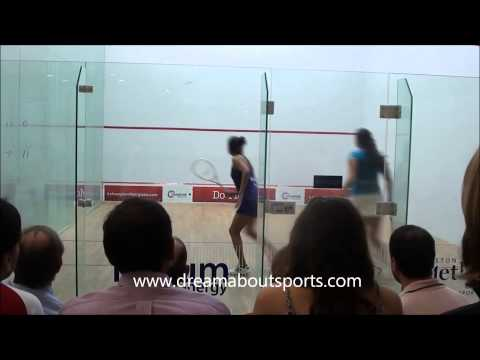Texas open 2014 - Dipika Pallikal vs El sherbini finals match highlights