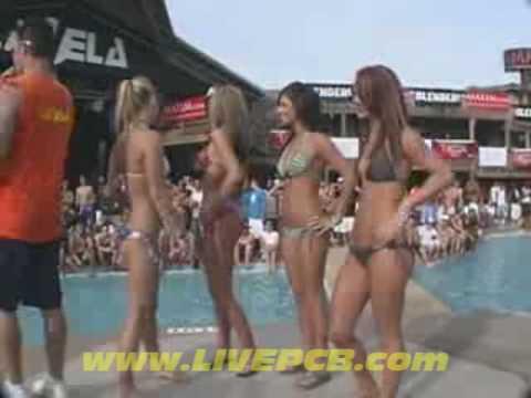 Find bikini contests in florida