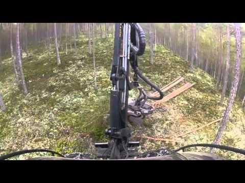 Rottne H8 - Máquinas Florestais - Forestcorte