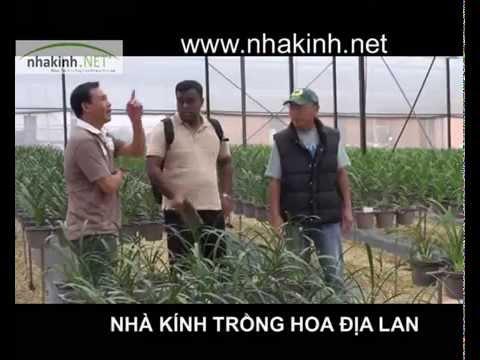 Trồng hoa địa lan trong nhà kính, Nhà kính nông nghiệp công nghệ cao
