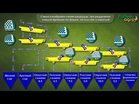 Видео о работе ОКМФ