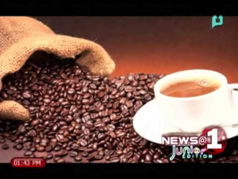 N@1 Junior: Caffeine found to enhance certain memories at least a day after they were formed