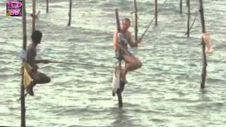 Técnica de pesca en palo