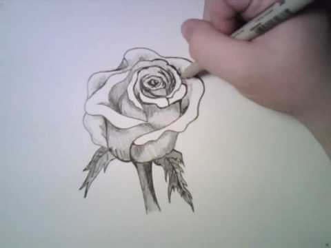 Drawing a Rose, Yes, I know. This is not an anime character. Its just nice to stray from the usual every now and again. However, if you refuse to deny the truth, consider th...